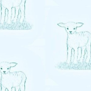 Little Lamb in blue