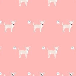 chihuahua fart funny white coat dog breed fabric pink