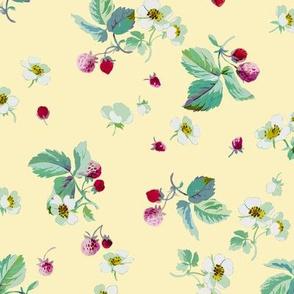 Strawberry Field buttercup