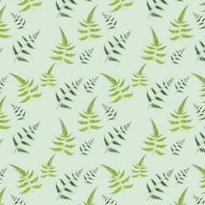 Ferns Pattern V4