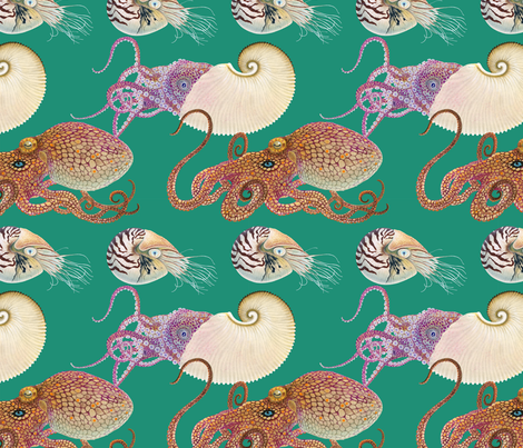 Octopi _ Nautili fabric by nickmayerart on Spoonflower - custom fabric