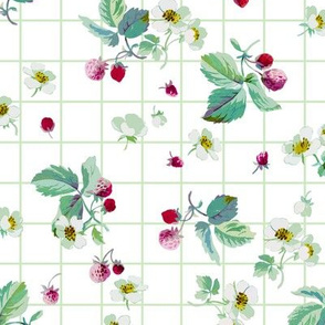 Strawberry Summer green tartan