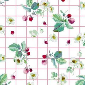 Strawberry Summer pink tartan