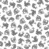 Rfrogs3-bw_shop_thumb