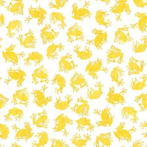 small golden frogs on white