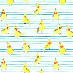 cockatiel watercolor-stripe