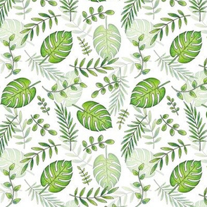 Monstera Leafy pattern Green on White
