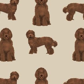 labradoodle dog fabric - chocolate labradoodles design - tan