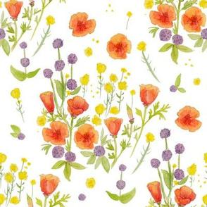 wildflowers watercolor on white / nursery baby kids floral design