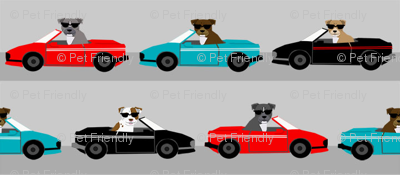pitbull sports car dog breed fabric pet lover pure breeds grey