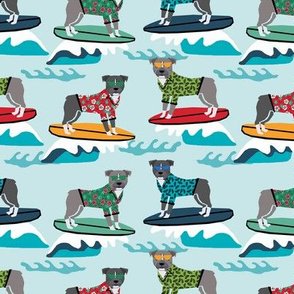 pitbull surfing summer beach dog breed pibble fabric 1
