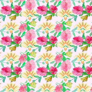 Hibiscus blush