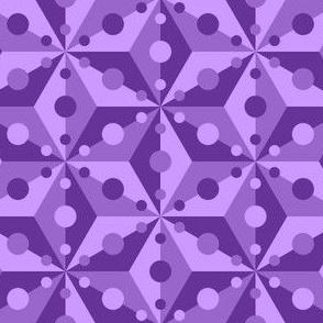 07378937 : SC3C spotty : violet