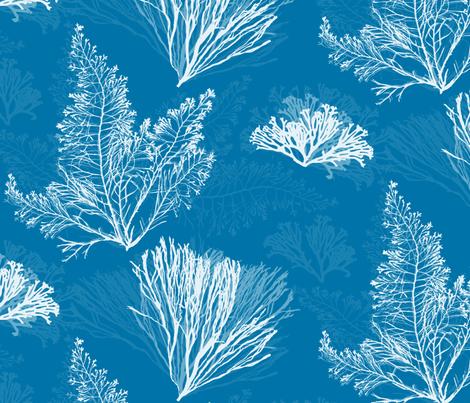 Ocean Flora in Beach Cottage Blue fabric by gigi&mae on Spoonflower - custom fabric