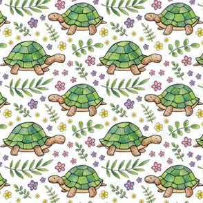 Tortoises and Flowers on White