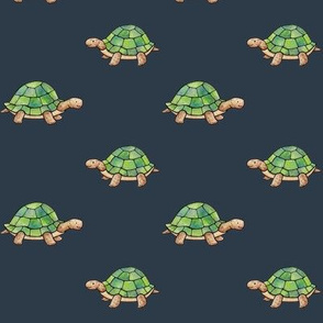Little Tortoises on navy