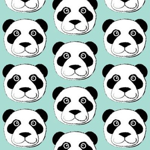 panda bear face on teal