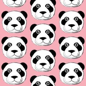 panda bear face on pink