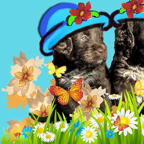 Cocker puppies with flowers