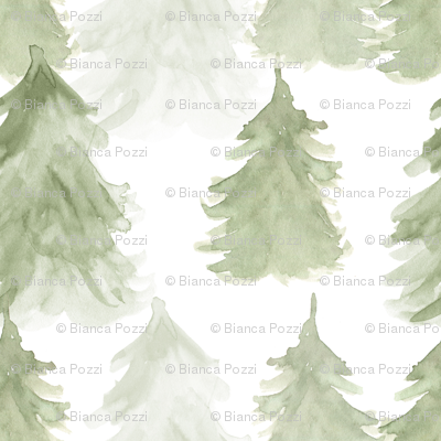 Forest Trees, Pine Trees, Woodland Pattern