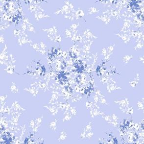 Abigail blue violet