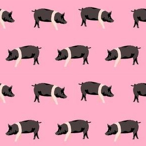 hampshire pig simple farm animal pigs fabric pink