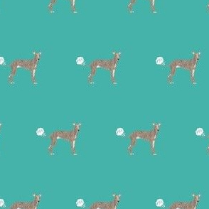 italian greyhound terrier funny fart dog breed fabric teal