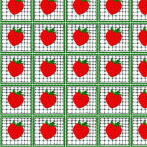 strawberries behind the rabbit fence