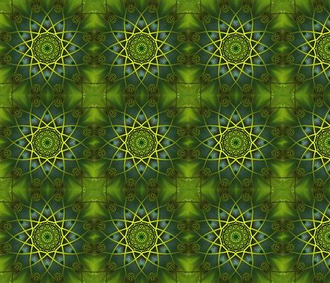 Rgreen-wonder-square-4_shop_preview