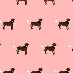 chocolate lab funny dog fart dog breed fabric pink