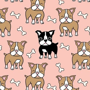 Boston Terrier Pattern and black on coral