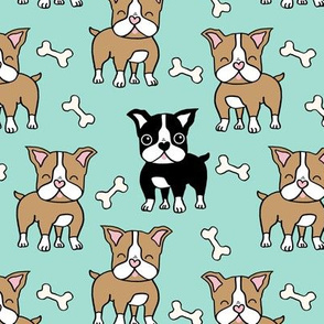 Boston Terrier brown and black on mint