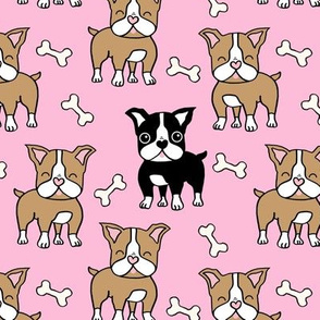 Boston Terrier brown and black on pink