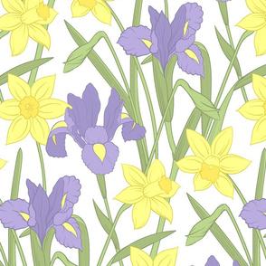 Iris and daffodils (large)