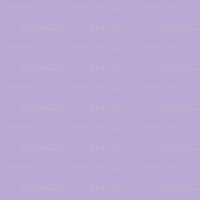 lilac -solid
