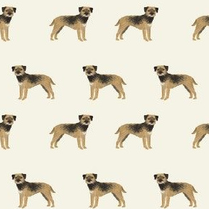 border terrier standing dog breed fabric