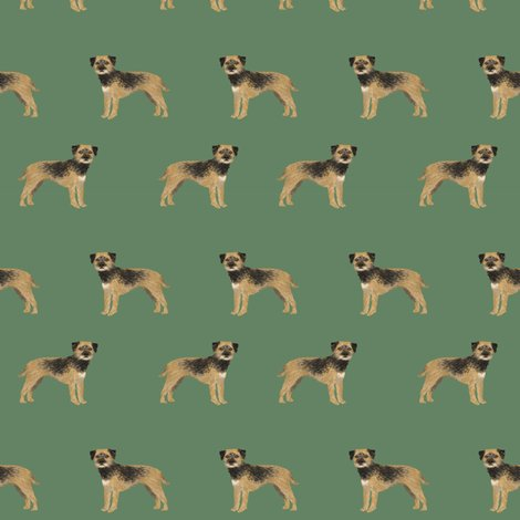 7386763_rborder-terrier-standing-3ed_shop_preview