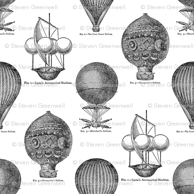Hot Air Balloons Toile - Black