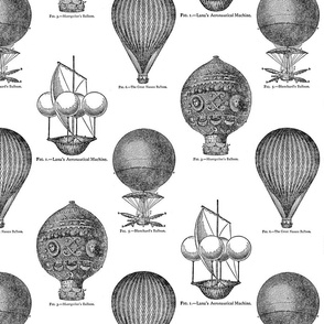 Hot Air Balloons Toile - Black