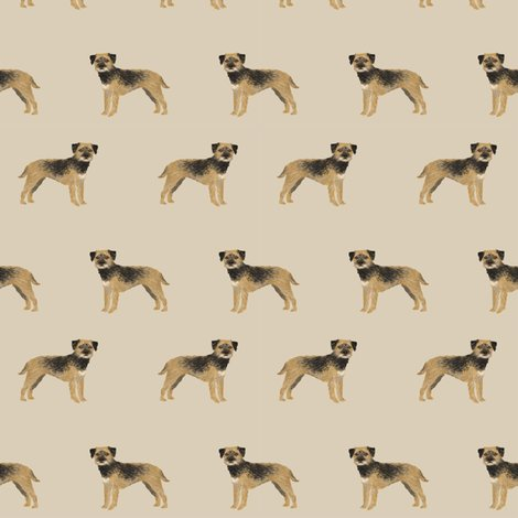 Rborder-terrier-standing-tan_shop_preview