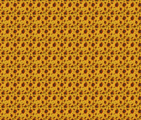 Bee Magnet Rubeckia fabric by flower_wall on Spoonflower - custom fabric