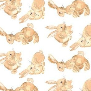 bunny rabbits rotate