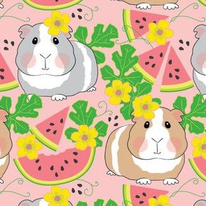 guinea-pigs-in-a-watermelon-patch on pink