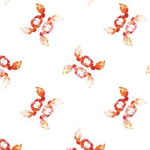 crabs on white