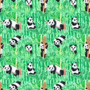 MY FOREST PANDASsmall