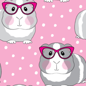 hipster guinea pigs on pink