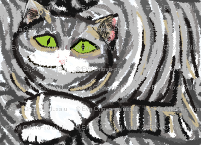 Big Fat Gray Cat