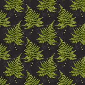 Watercolor Fern Pattern on Black Background