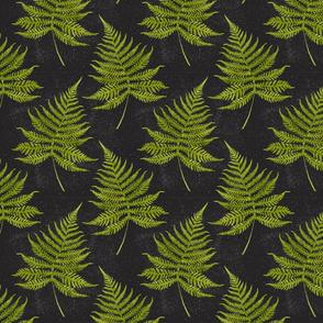 Watercolor Fern Pattern on Black Background