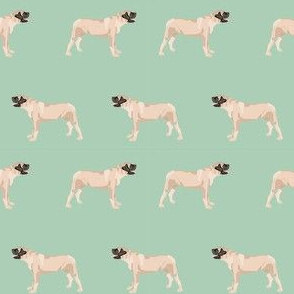 english mastiff dog breed pet fabric standing mint